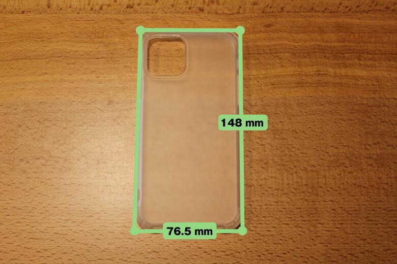 CASEFINITE Frost Pro iPhone 11 Proサイズ