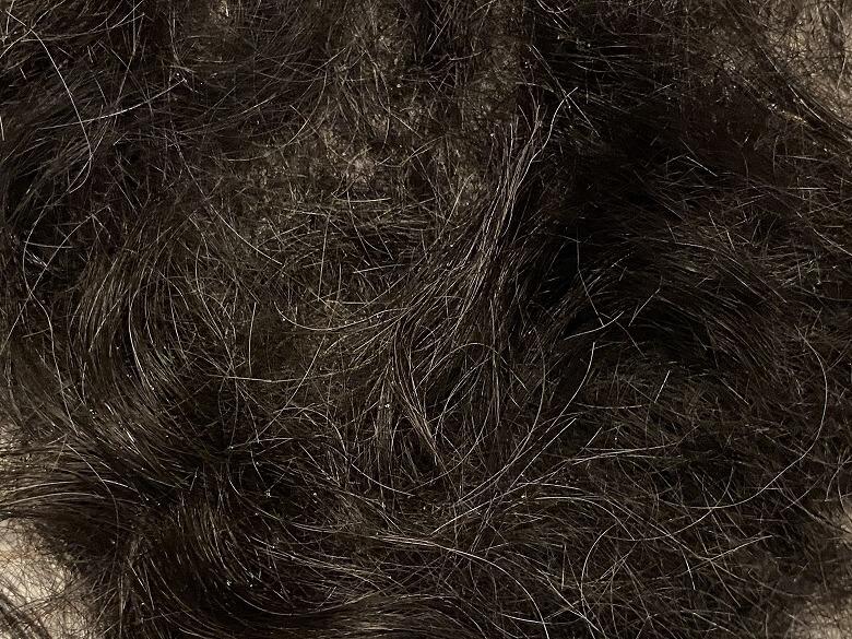パナソニック プロリニアバリカン ER-GP82-K 髪の毛